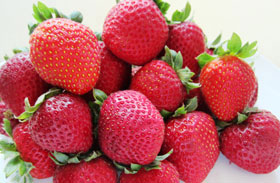 gallery-strawberries-web-p